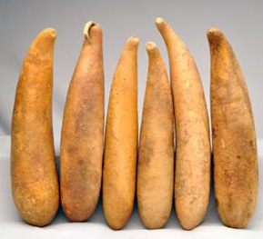 People Gourds